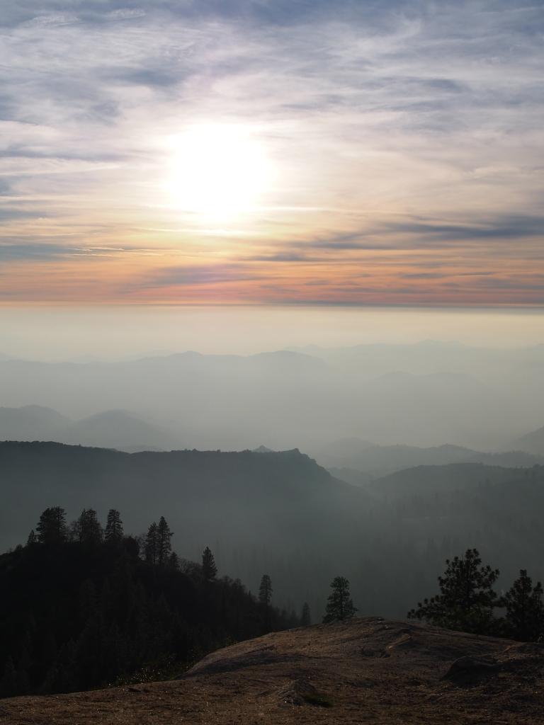 Sequoia Drive Sunset